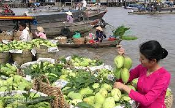South Vietnam tour -  One Day Mekong Delta @35$