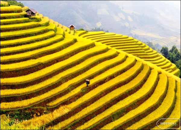 SAPA 3 DAYS - (2 NIGHTS IN HOTEL) @155$